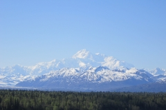 Dianas-pictures-trip-to-Alaska-201-1